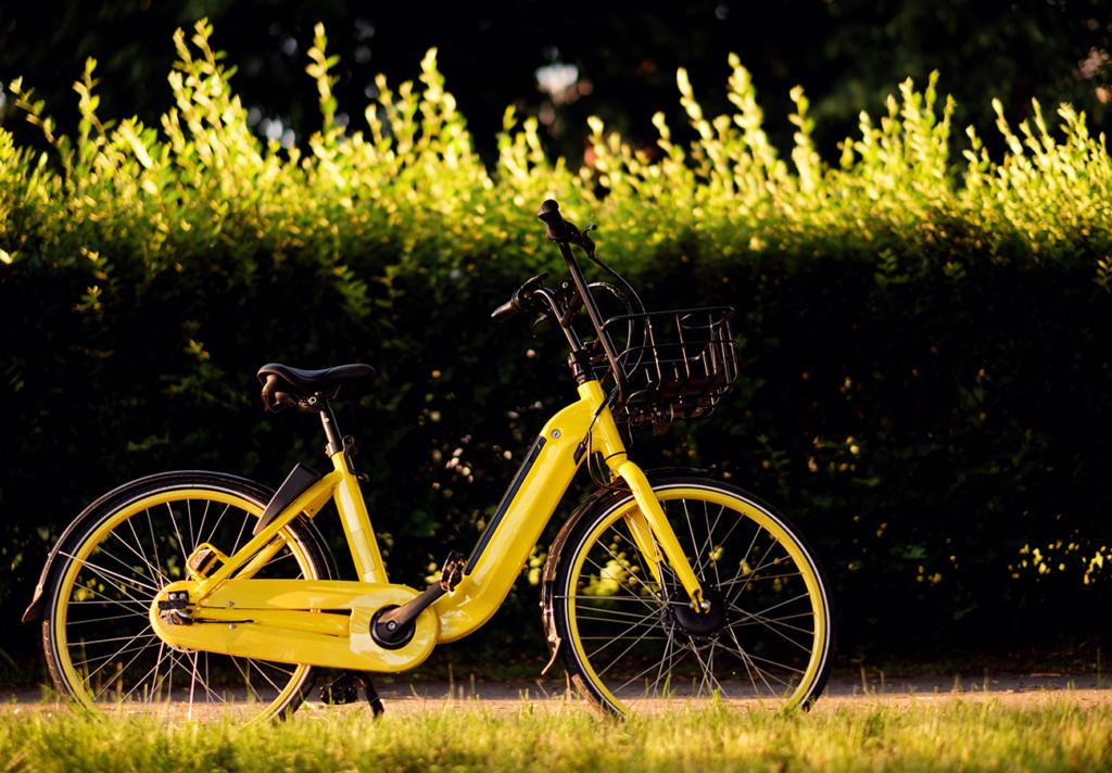 si può usare la bici elettrica nei parchi?